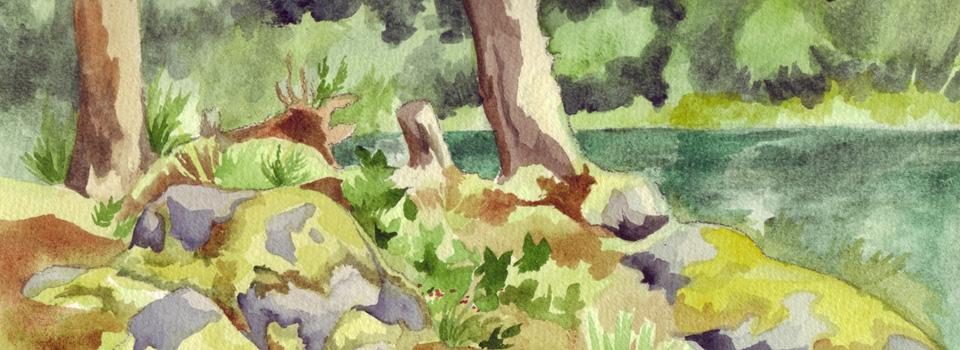 Quadra Island Lake